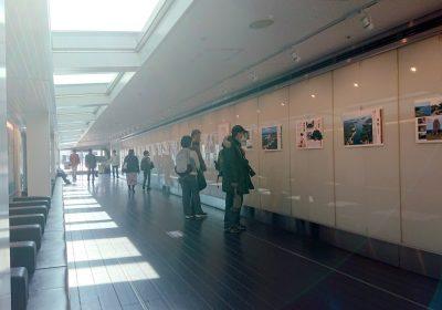羽田空港第2ターミナルビル5階にて「ふるさと先人展」開催中!
